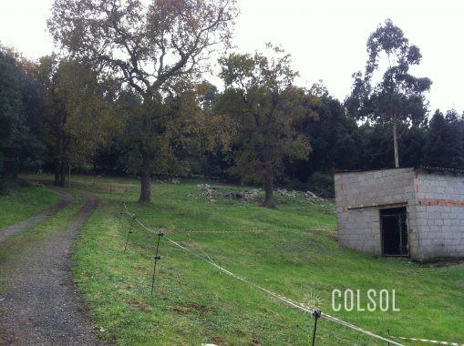 Parcela El Bosque 003
